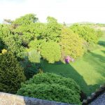Back Garden view from roof.